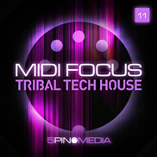 Tribal Tech House