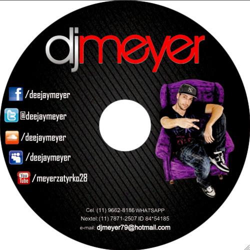 DJ Meyer In Tha Mix