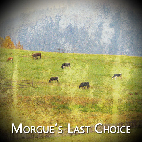 Morgue's Last Choice - Loomade Kokkuajaja (tapaks)