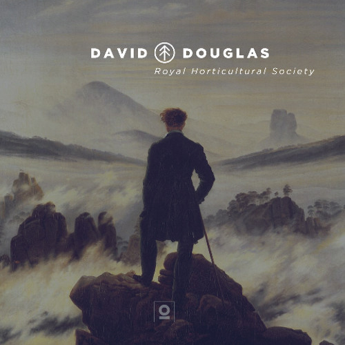 David Douglas - Douglas Firs