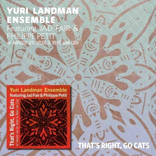 Yuri Landman Ensemble - Wall Of Muur