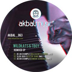 Wildkats & Tboy - Be an Example (Balcazar & Sordo Rmx)