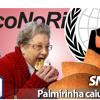 SocoNoRim #001 - Palmirinha caiu na net