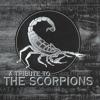Rock you like a Hurricane - Dynamite Scorpions Cover