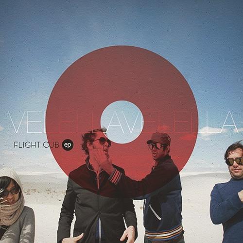 Velella Velella |  Flight Cub