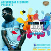 BURNA BOY    LIKE-TO-PARTY