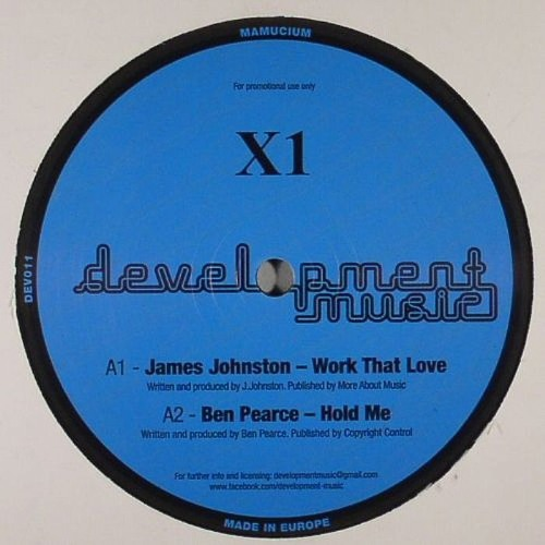Work That Love (track on V/A vinyl release on Development Music...OUT NOW!)