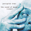 Porcupine Tree - The Sound of Muzak (cover)