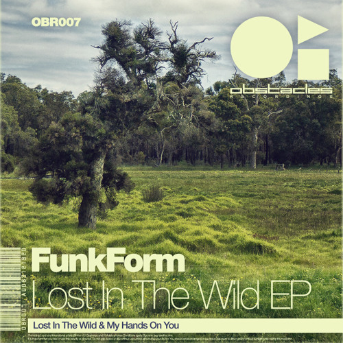 FunkForm - Lost In The Wild