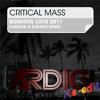 Critical Mass - Burnin Love (D-Block and S-Te-Fan Remix)(DJ Ardigi Re-Edit)