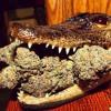 Smokin' in California (Prod. by DOPFunk) - Taylo Psymind Funky West Coast Talkbox Hip-Hop Lyrics