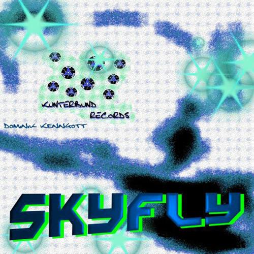 Dominik Kenngott - Skyfly (remix) - Kunterbund Rec