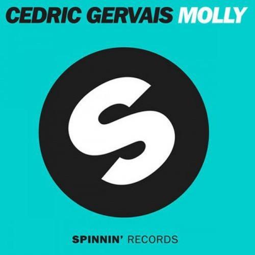 Cedric Gervais - Molly (Braden Erhardt Remix)