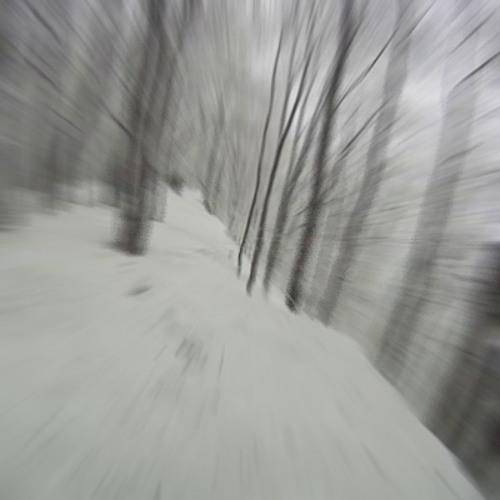 Sled Race Down White Mountain