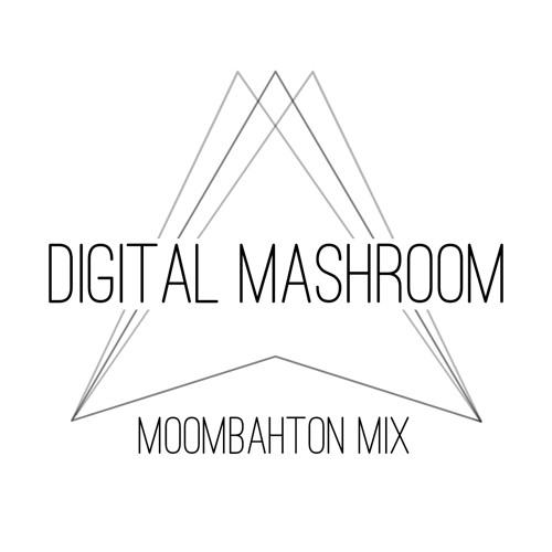 ► DIGITAL MASHROOM - ▼ THIS ▼ IS ▼ MOOMBAHTON ▼ Mix #2