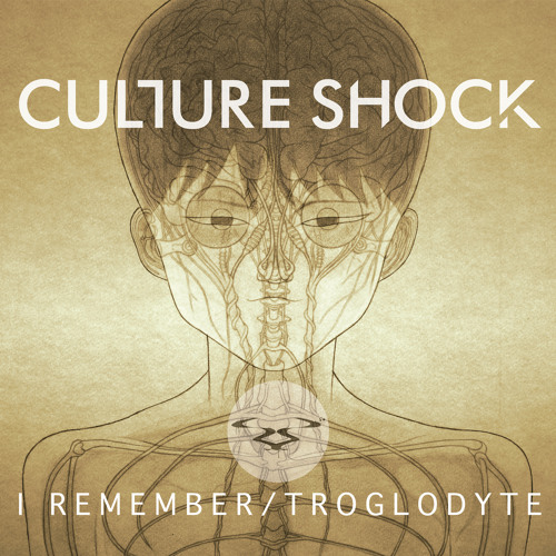 Culture Shock - Troglodyte