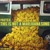 This Is Not A Marijuana Song