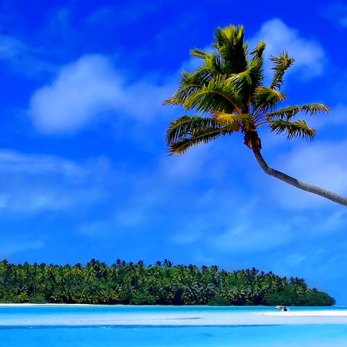 AAMM - Deep Caribbean Link