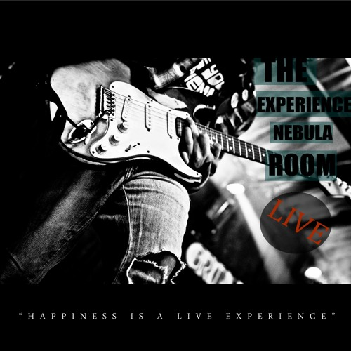 Happiness is a live Experience (2012)