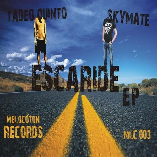 Skymate & Tadeo Quinto - Escapade (Original Mix) Melocoton Records MLC003 CUT