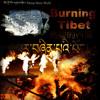 New Tibetan Song2012 Uumay Lamlay Lhakpa Mey