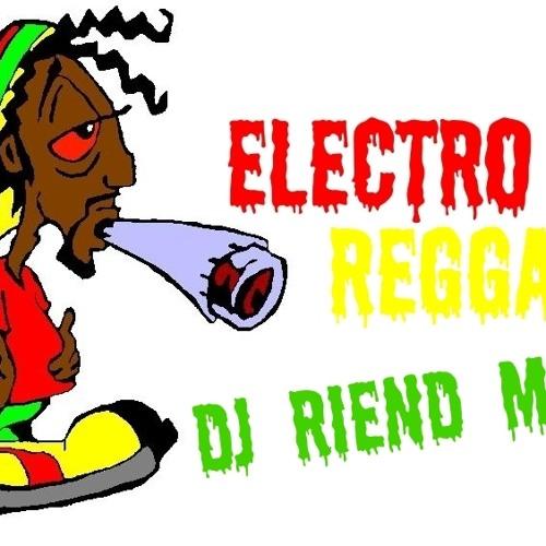 Dj Riend - Electro Reggae Mix