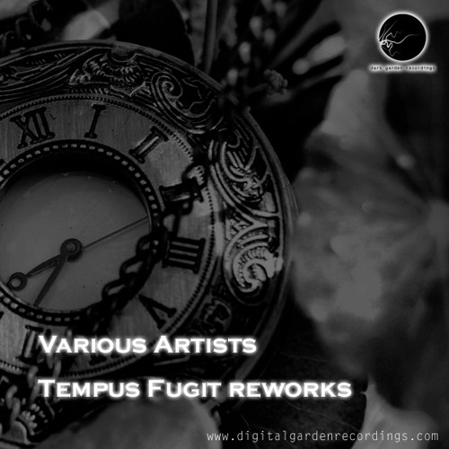 Snap-9A - Tempus Fugit (After MIx) Prewiev