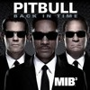 Pitbull Back in time MIX