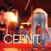 Cernit -
