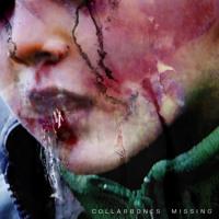 Collarbones - Missing