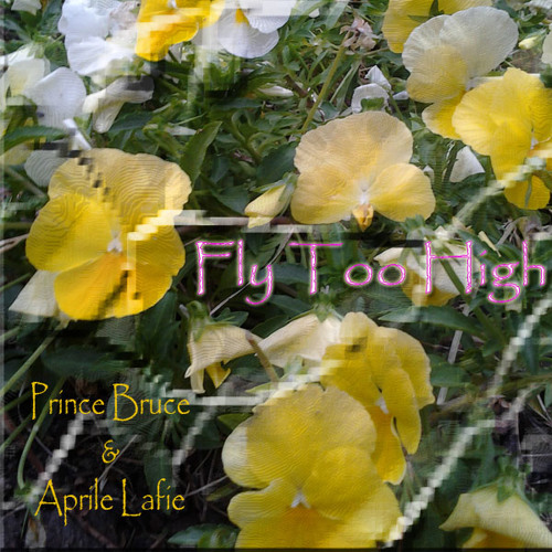 Fly Too High w/subliminal Affirmations