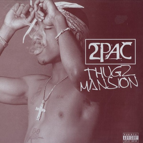 Thugz Mansion - Mac Miller (2Pac Cover)
