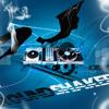 Bodyguard  diljit remix by dj groundshaker and dj vicky2012
