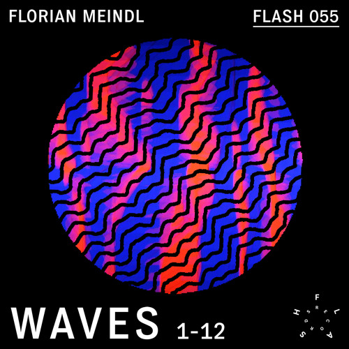 Florian Meindl - The Beginning (Taken from the album WAVES)