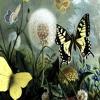 Three Inches of Heaven - Bu Bu Jing Xin OST