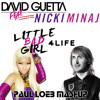 David Guetta vs. Nicki Minaj ft. Drake - Little Bad Girl 4 Life (Paul Loeb Mashup)  [FREE DOWNLOAD]