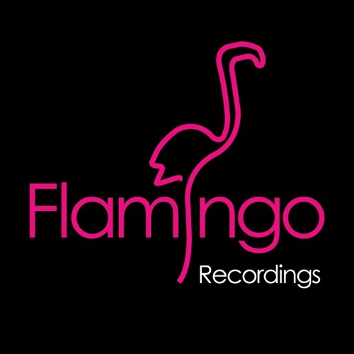 Gum Me - Sweaty Shirts (Bartosz Brenes & Tony Romera Remix) [Flamingo Recordings]