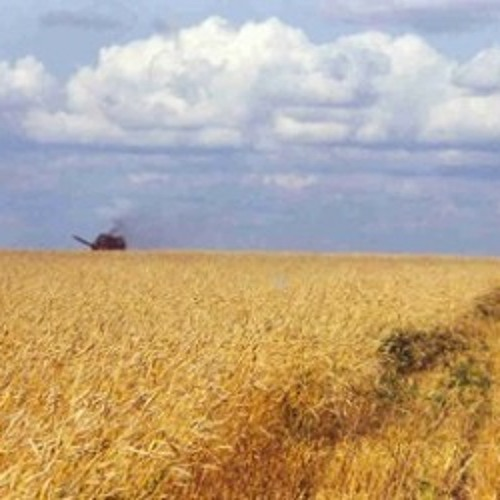 Ukrainian Agriculture Dub