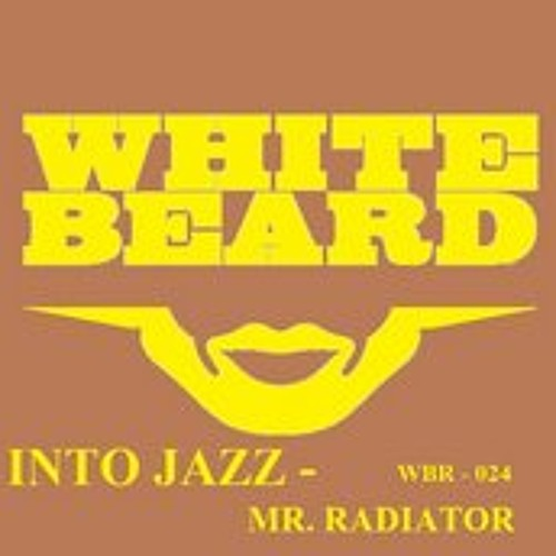 Mr Radiator - Into Jazz (Whitebeard Records)