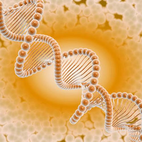 Xhamanik Ritual - Genetic Frequencies
