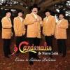 Los Cardenales De Nuevo Leon MEGA MIX 2012 Portada del disco