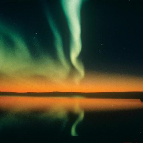 Liqweed - Lights