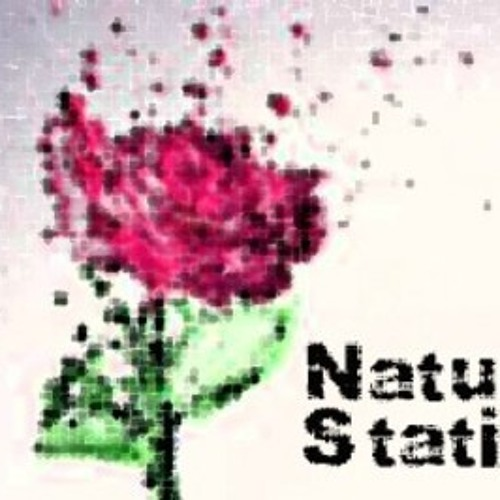 Natural Static