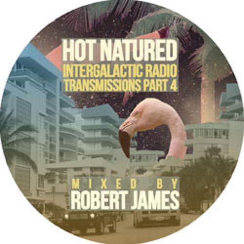 Robert James - Hot Natured Intergalactic Radio Transmissions 004