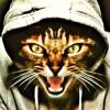 Eye of the Tiger Ukulele Instrumental