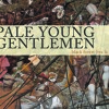 Pale Young Gentlemen - The Crook Of My Good Arm