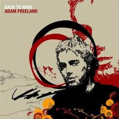 Adam Freeland - Back To Mine (2005)