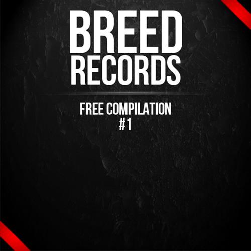BRD01 - Breed Records Compilation Teaser - Free Download in description