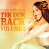 DJ Carl Finesse Presents Tek Dem Back Vol 3 (80's & 90's Reggae/Dancehall Mix)