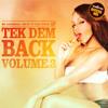 DJ Carl Finesse Presents Tek Dem Back Vol 3 (80's & 90's Reggae/Dancehall Mix)